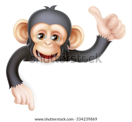Cartoon chimp monkey like character mascot peeking above a sign giving a thumbs up and pointing down - stock photo