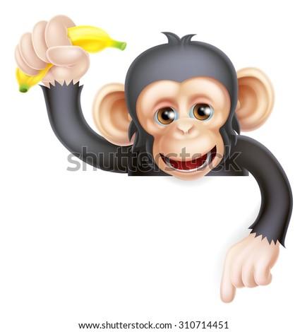 Cartoon chimp monkey like character mascot peeking above a sign holding a banana and pointing down - stock photo