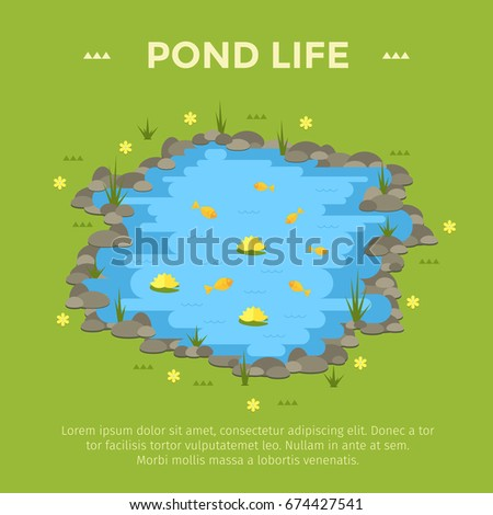 Koi cartoon stock images royalty free images vectors for Garden pond life