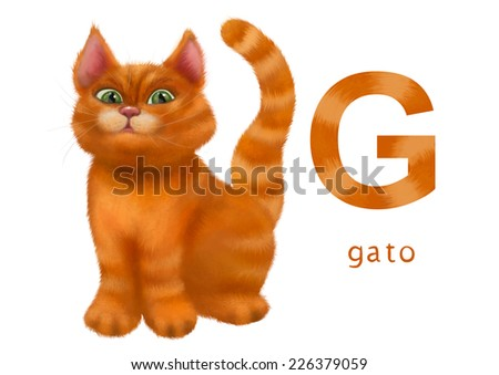 Cartoon Illustration of Colorful Spanish Alphabet or Alfabeto Espanol. Isolated on white. Letter G, gato, cat - stock photo