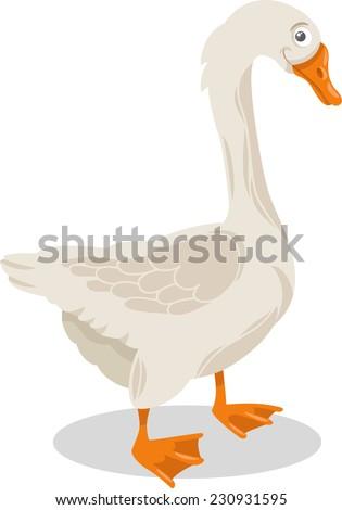 Cartoon Illustration of Funny Goose Farm Bird Animal - stock photo