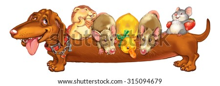 Cartoon pets rodents and a duckling, ride a back of the friend of a dog of a dachshund. Invitation card for a holiday or birthday. Raster illustration.  - stock photo