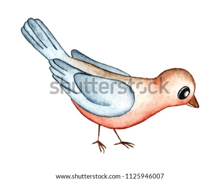 Cartoon Robin Redbreast Bird Watercolor Illustration Stock