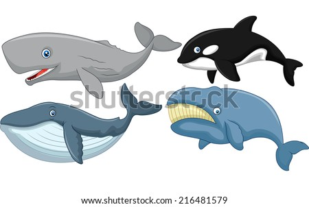 Cartoon whale collection - stock photo