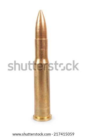 cartridge gun - stock photo
