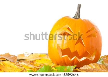 Carved Halloween Jack O Lantern with autumn foliage isolated on white background. - stock photo