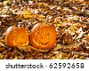 Carved Halloween Jack O Lanterns of different shapes and sizes in forest. - stock photo