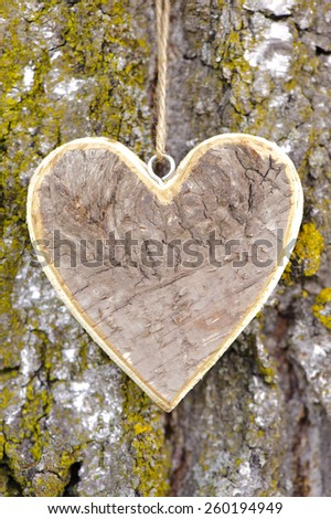 carved wooden heart on tree bark - stock photo