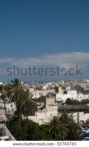 casablanca morocco rooftop view of harbor with boats and old medina apartments condos and shopping district with tropical tree in africa - stock photo