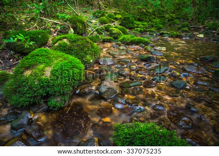 Cascade falls over green mossy rocks in Phukradung national park Thailand - stock photo