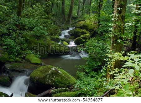 Cascade falls over mossy rocks - stock photo