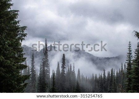Cascade mountains, Chinook Pass, Washington State