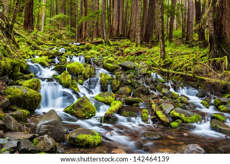 cascade waterfall in Olympic national park, WA, US - stock photo