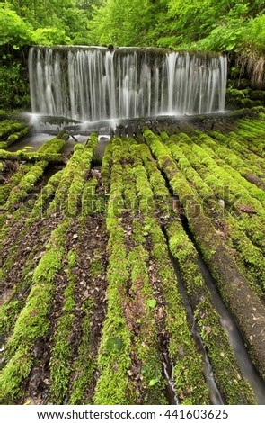 Cascade with logs - stock photo