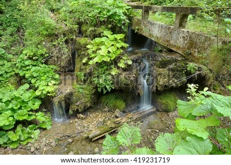 cascades, moss and leaves in the Apuseni Mountains, Romania - stock photo