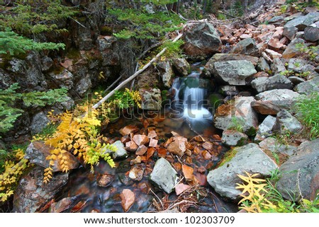 Cascades of a small stream in the Lewis and Clark National Forest of Montana - stock photo