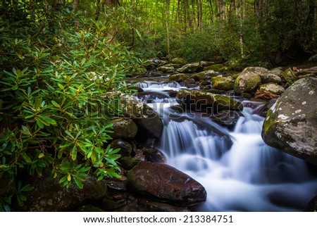 Cascades on Roaring Fork, in Great Smoky Mountains National Park, Tennessee. - stock photo
