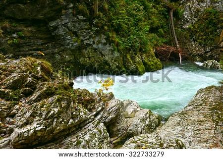 Cascades on the Radovna River,Vintgar Gorge,Slovenia, - stock photo