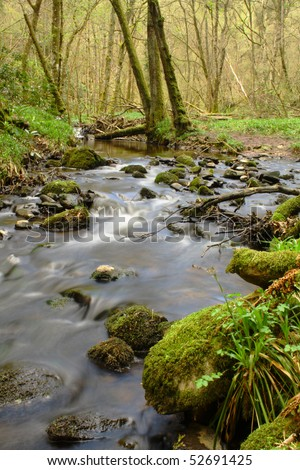 Cascading river, Scots Pine forest, Scotland - stock photo