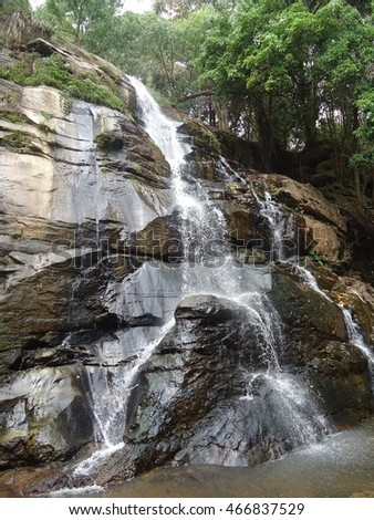 Cascading Waterfall in Forest