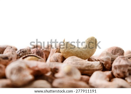 cashew nut - stock photo