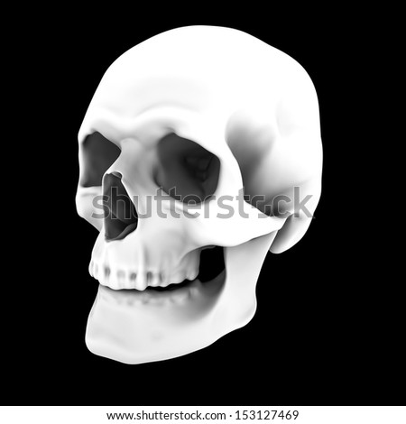 cast of a human skull isolated on black