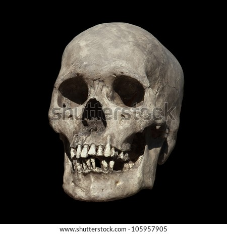 Cast of a weathered human skull isolated on black - stock photo