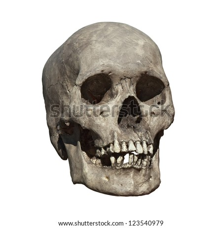 Cast of a weathered human skull isolated on white. - stock photo