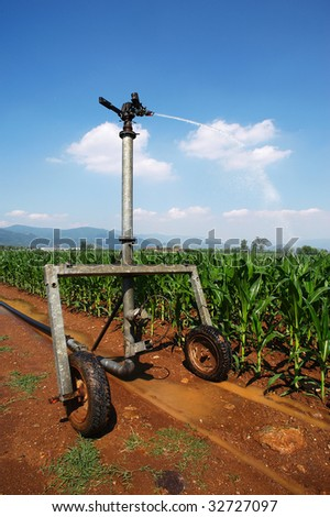 Castegnato (Bs),Franciacorta,Lombardy,Italy,plant irrigation in a cornfield in June - stock photo