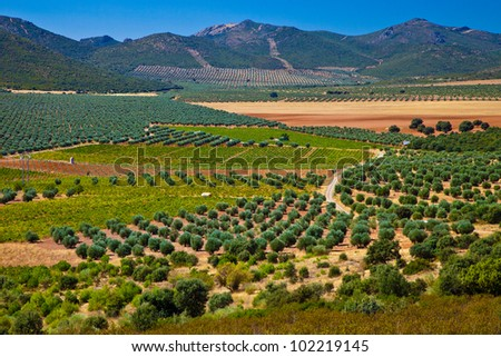 Castilla La Mancha landscape, Cultivated fields in Spain - stock photo
