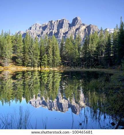 Castle Mountain reflected into Copper Lake, Lake Louise, Banff National Park, Alberta, Canada - stock photo