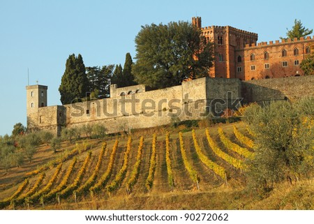 castle of Brolio and vineyards in Chianti, Tuscany, Italy,Europe - stock photo