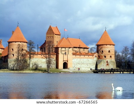 Castle of Trakai and swan