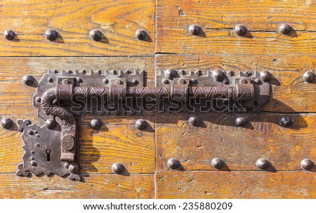 Castle on the old wooden door in Florence, Tuscany, Italy - stock photo