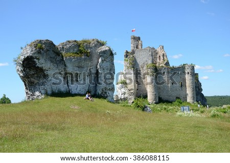 Castle ruins in Poland (Mirow)