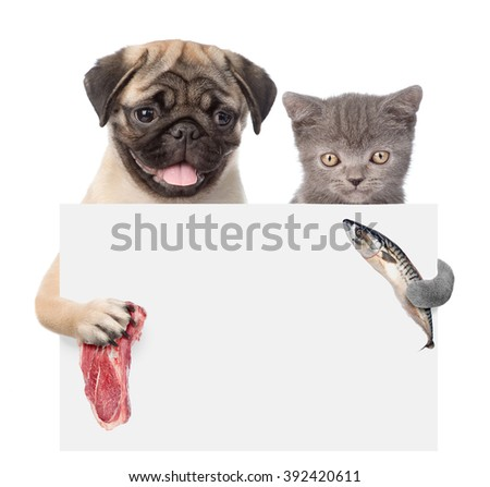 Cat and dog holding fish and meat peeking from behind empty board. isolated on white background - stock photo
