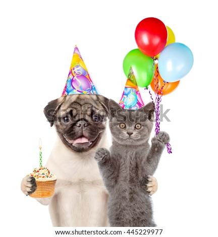 Cat Dog Birthday Hats Holding Balloons Stock Photo Royalty Free