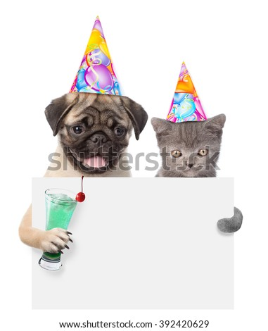 Cat and dog in birthday hats holding cocktail peeking from behind empty board. isolated on white background - stock photo