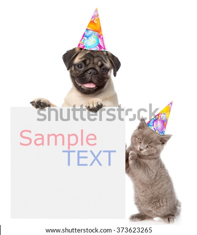 Cat and Dog in birthday hats peeking from behind empty board and looking at camera. Space for text. isolated on white background - stock photo