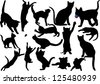 Cat and kitten silhouette on white background. Raster version. - stock photo