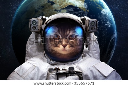 Cat Astronaut in outer space. Spacewalk. Elements of this image furnished by NASA - stock photo