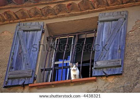 cat at the window of the typical south east of france old stone village of ramatuelle near saint tropez on the french riviera - stock photo