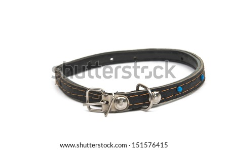 cat collar isolated on white background - stock photo