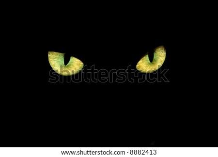 cat eyes in dark - stock photo