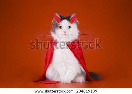 Cat in a devil costume - stock photo