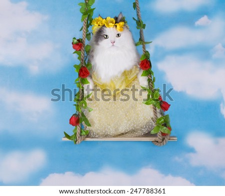 cat in a yellow dress and a wreath on a swing - stock photo