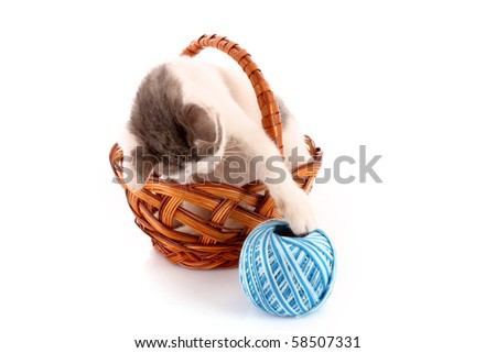 cat in basket and wool ball isolated on white - stock photo