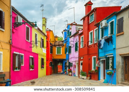 Cat in the patio with colorful houses on the famous island Burano, Venice, Italy - stock photo