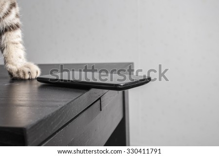 cat is going throw a cell phone on the floor dangerously resting on the edge of the table, carelessly left  - stock photo