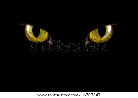 cat's eyes glowing in the dark. halloween background - stock photo
